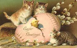 EasterCats3