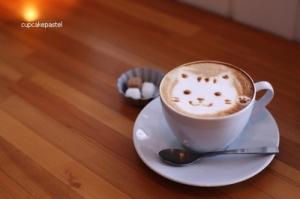 coffee-cat-cute-drinks-kawaii-Favim.com-338394